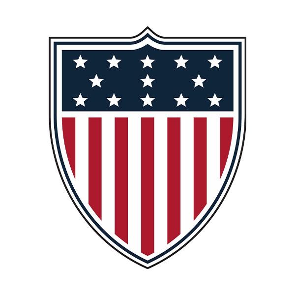 TEAM USA SHIELD MAGNET